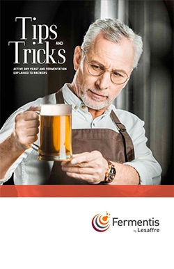 Front cover of Fermentis dry yeast tips n tricks booklet