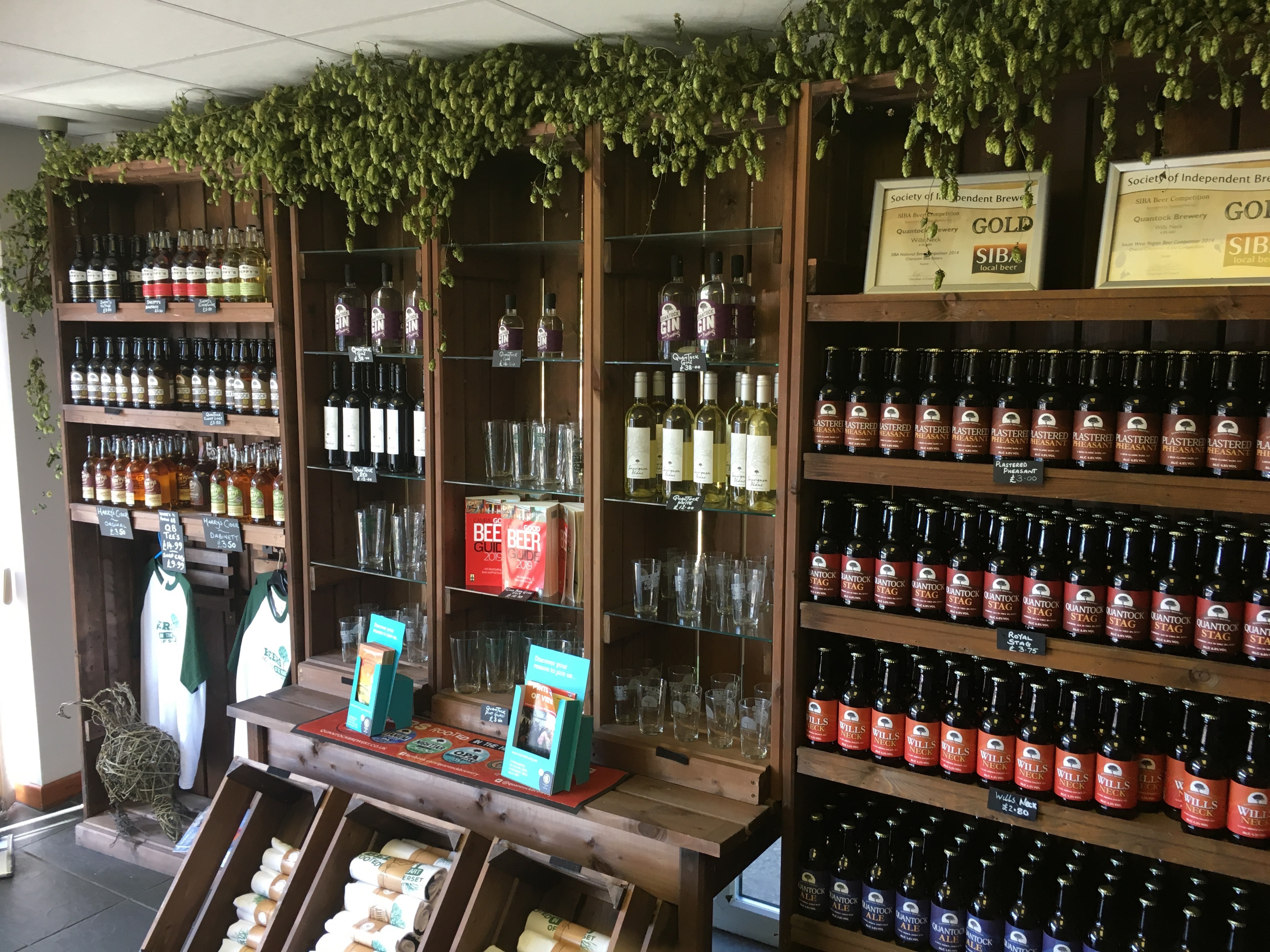 Photo of hop bines decorating Quantock Brewery's shop